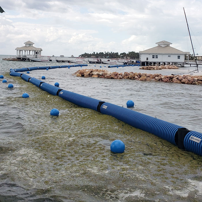 Sargassum seaweed containment boom appearance